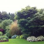 Une des vues de notre jardin
