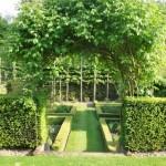 Jardin en paliers avec pergola, avant la floraison