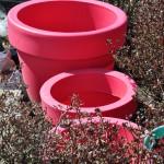 Jardinières de couleur