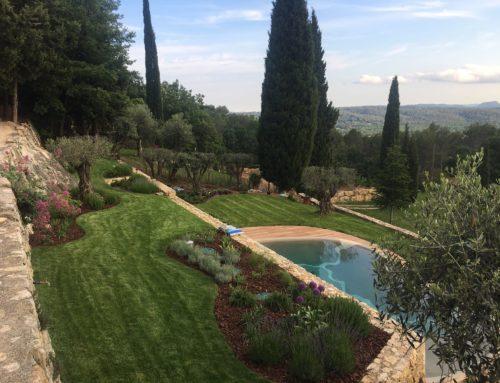 Aménagement paysager, plantations et pose de pelouse en rouleaux